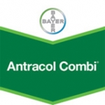 Antracol Combi WP 76